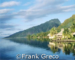 Overwater Bungalows-Moorea by Frank Greco 